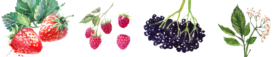 fruits image