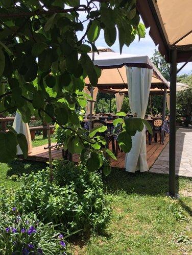 vista angolare di ristorante con alberi