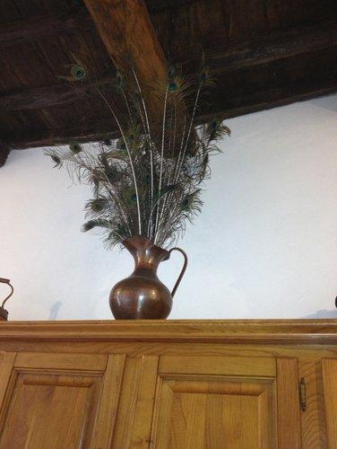 piuma di pavone in un vaso