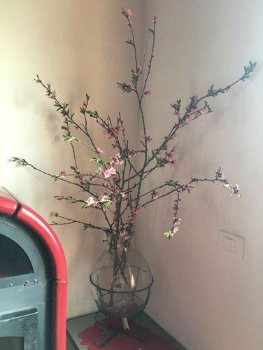 angolo con un vaso di fiori