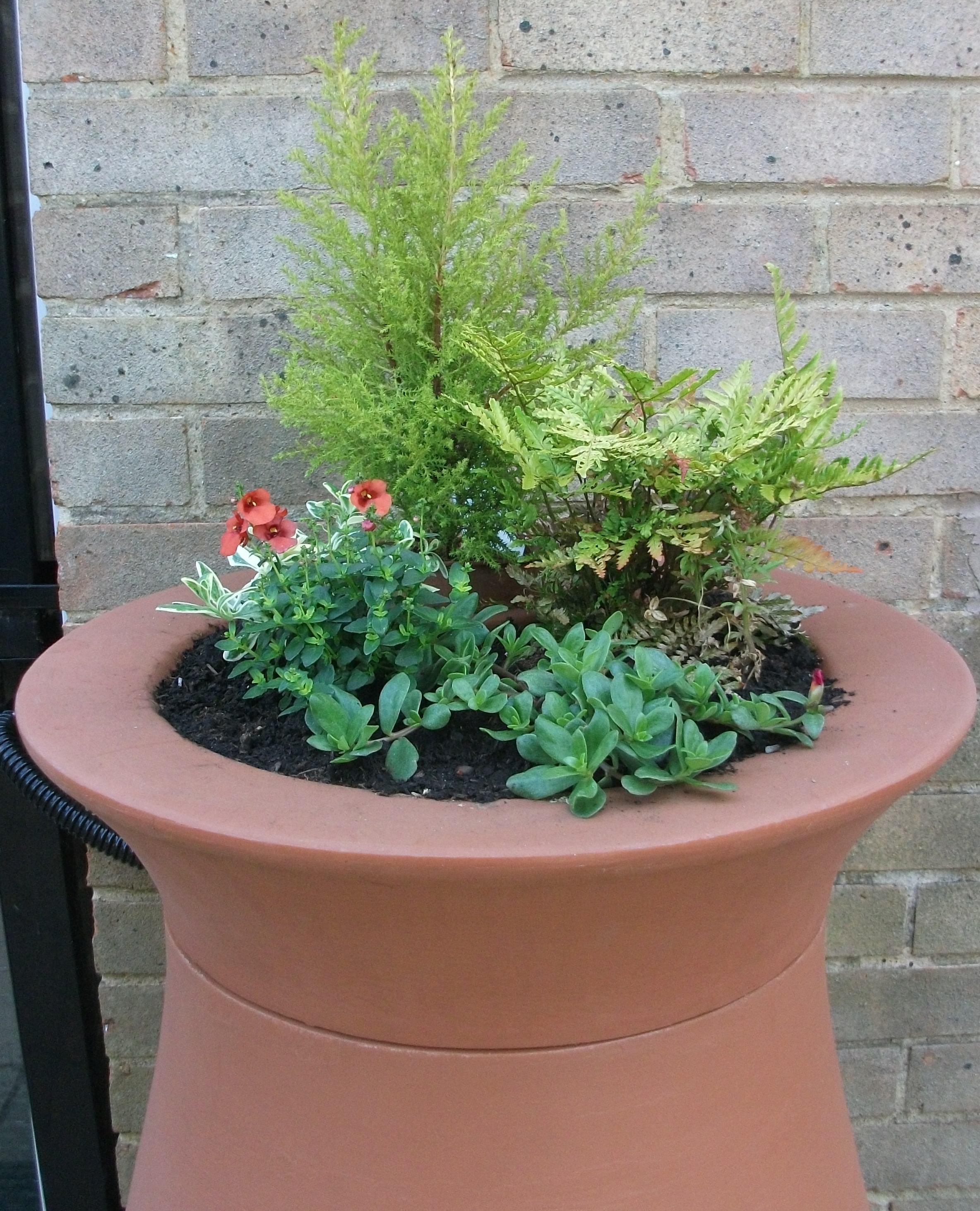 Garden water barrel with flowers on it's lid