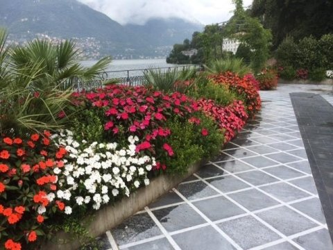 costruzione e progettazione giardini