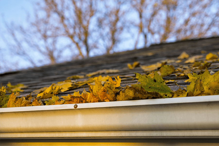 Gutter Cleaning Houston Houston Gutter Cleaning Experts