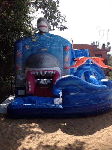 Gonfiabile di squalo