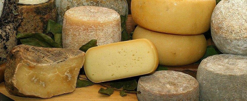 formaggi tipici