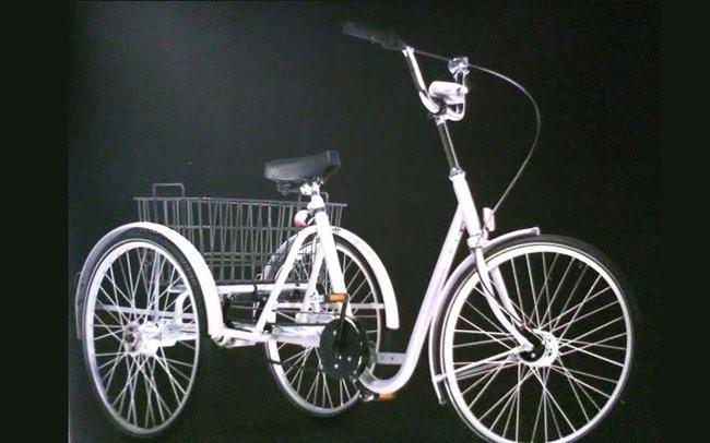 Ausili per disabili- bicicletta-officina del disabile-Torino