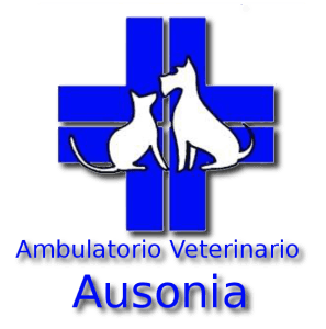 Ambulatorio Veterinario Ausonia