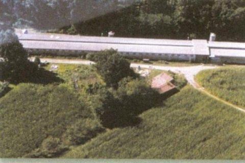 Azienda avicola