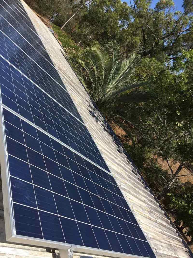 solar panels near trees