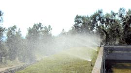 irrigazioni, giardini, manutenzioni