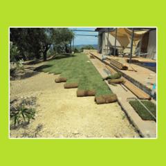 aree verdi e giardini