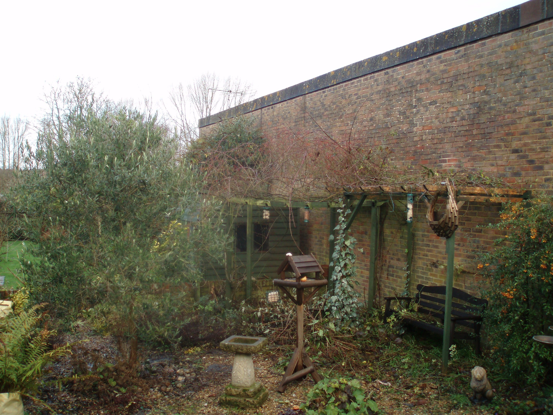 uncleaned garden area