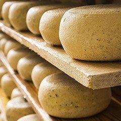 Sale per formaggi