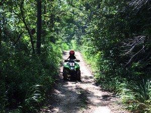 Off Road Trails - Smurfwood Trails