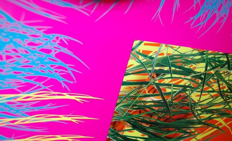 Serigrafia inchiostro fluorescente Stampa multicolore con inchiostri fluorescenti