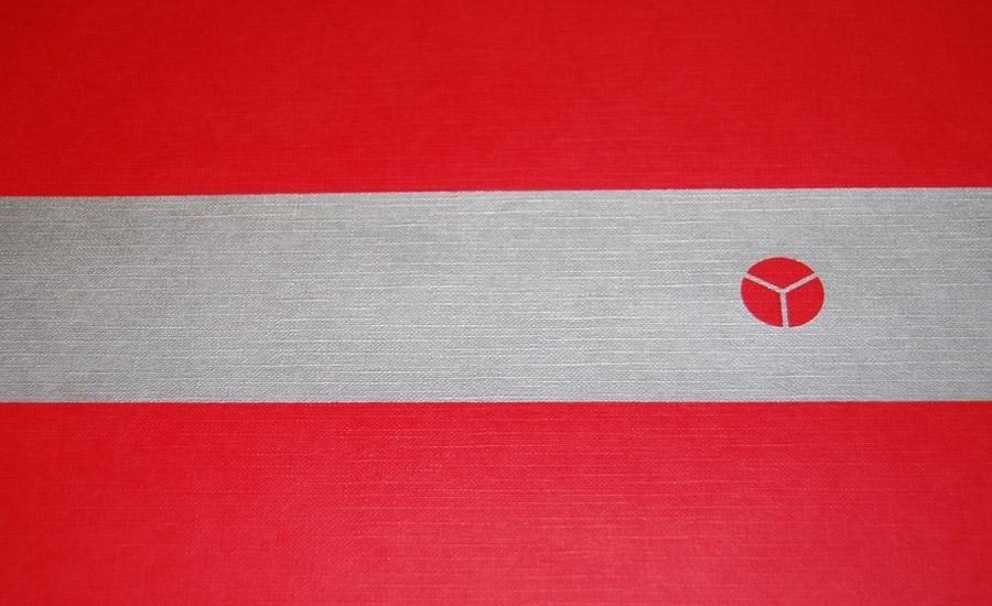 Serigrafia a pigmenti metallici Stampa serigrafica argento su carta lavorata