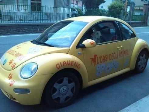 un Volkswagen giallo New Beetle