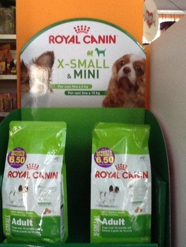 delle crocchette per cani della marca Royal Canin