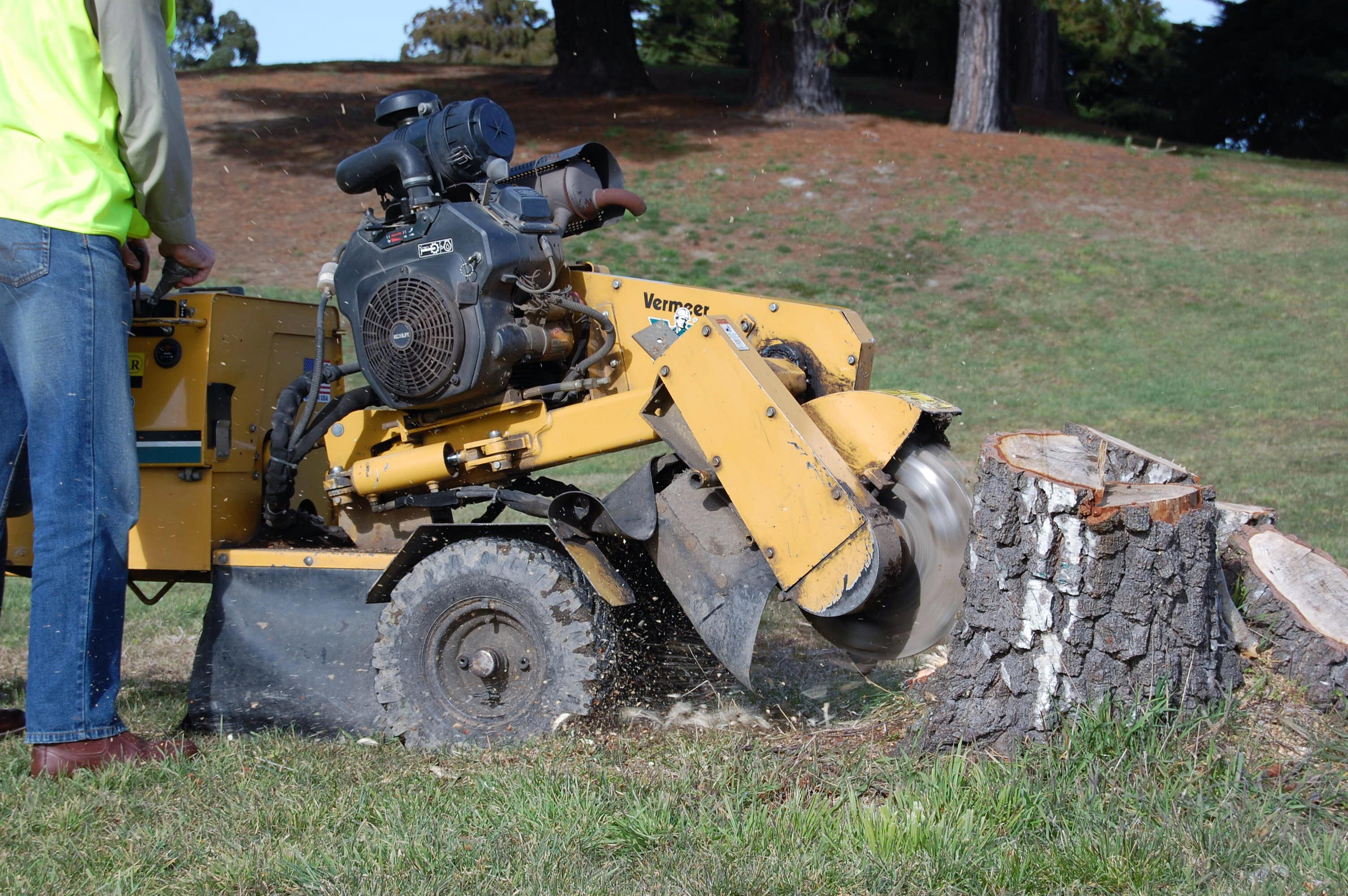 Skilled grinding stump with machine