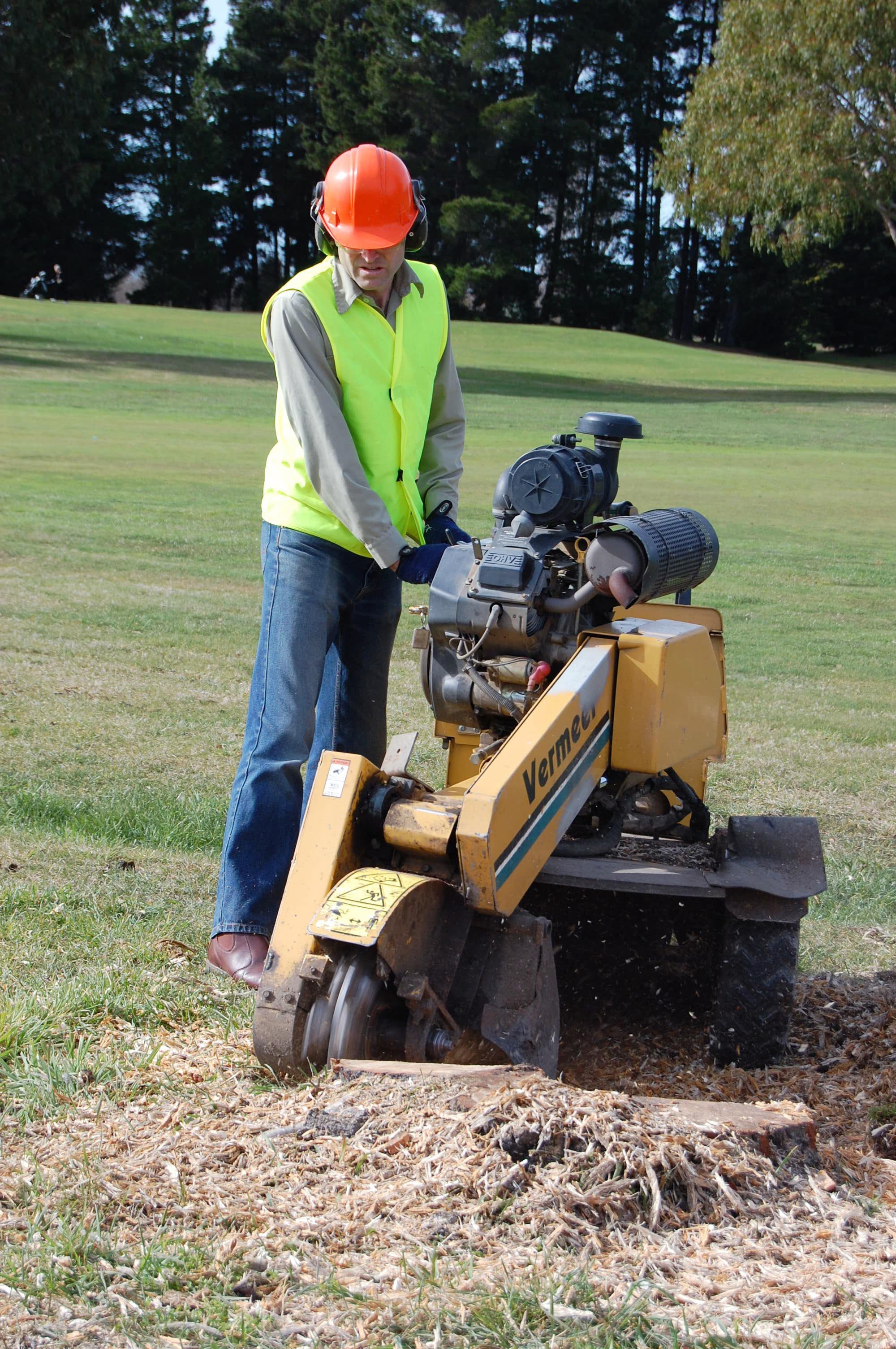 Expert using stump grinding machine to clear stump