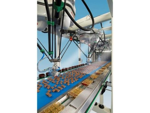 conveyor belt for foods