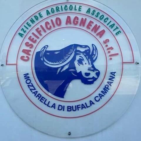 CASEIFICIO AGNENA S.R.L-logo