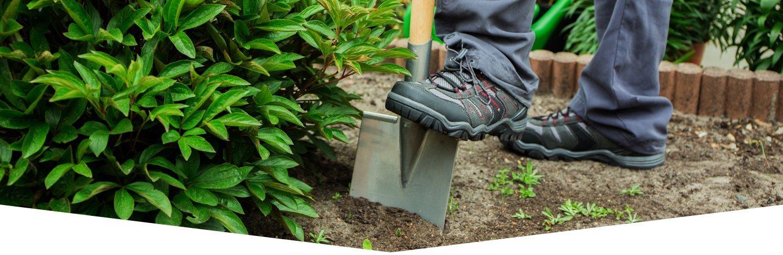 manutenzione del verde, giardinaggio, prato, siepi