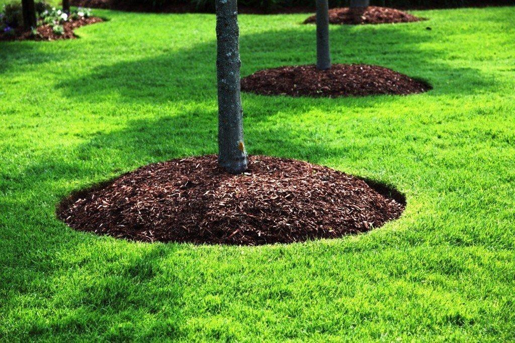Stouts Landscape & Lawn Service, Mulching