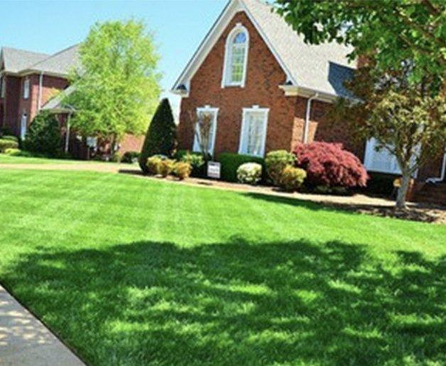 Stouts Landscape & Lawn Service, Residential Lawn Care