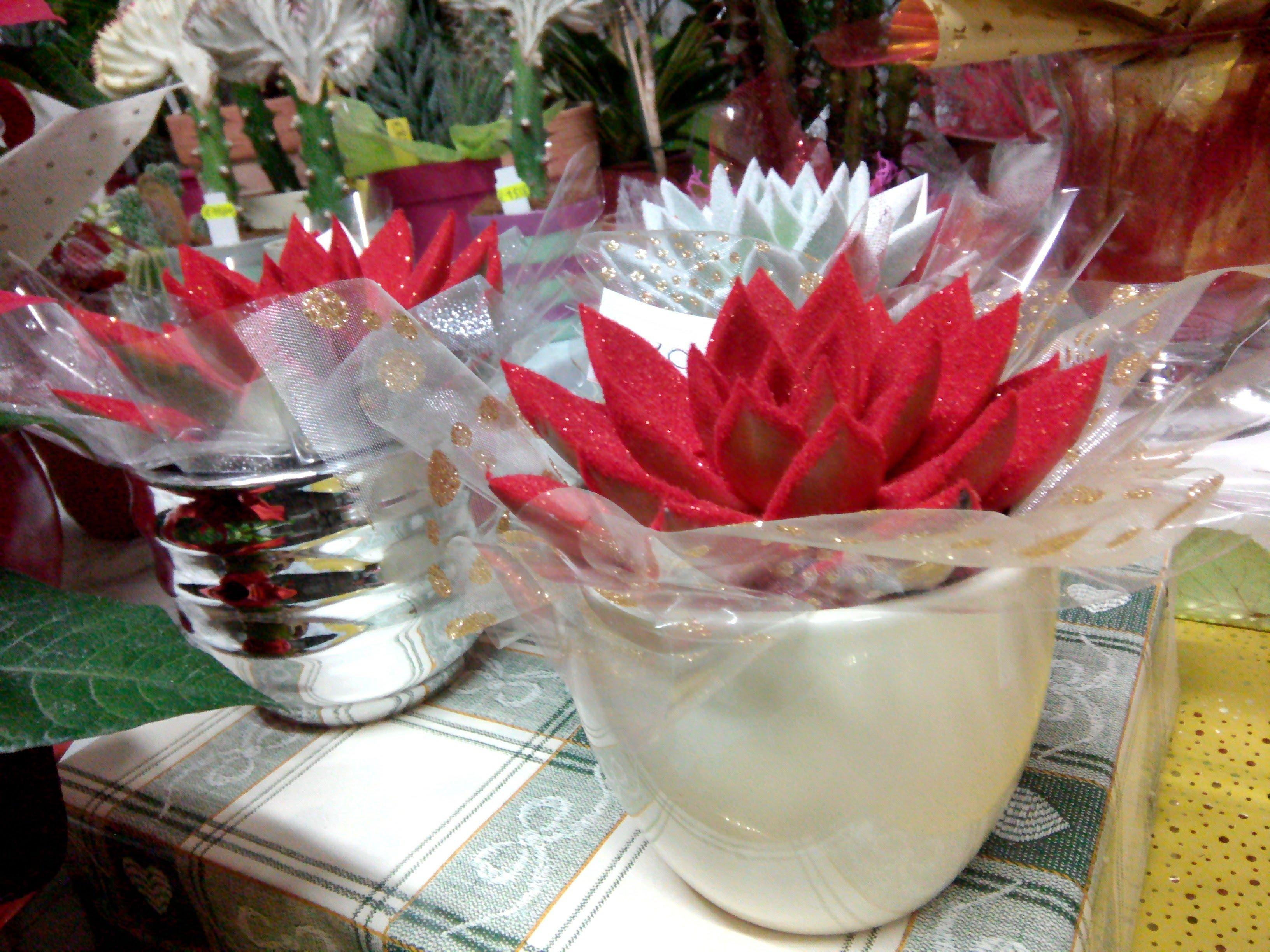 fiori rossi in un vaso bianco