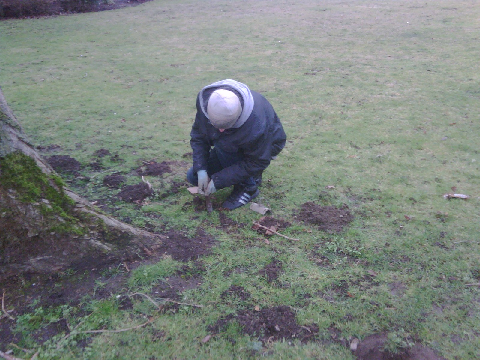mole trapping in gardens in witney