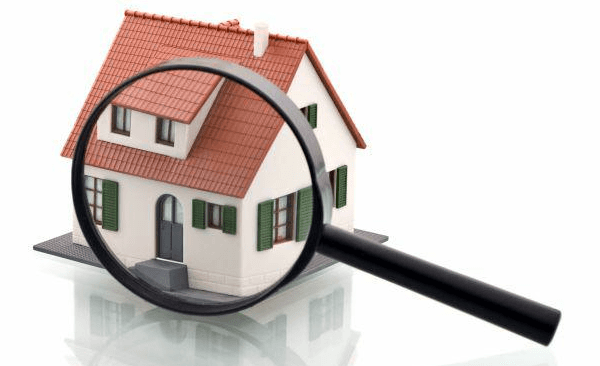 house pest inspection