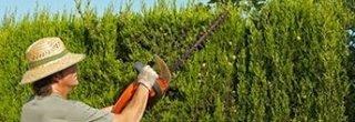 servizi giardinaggio