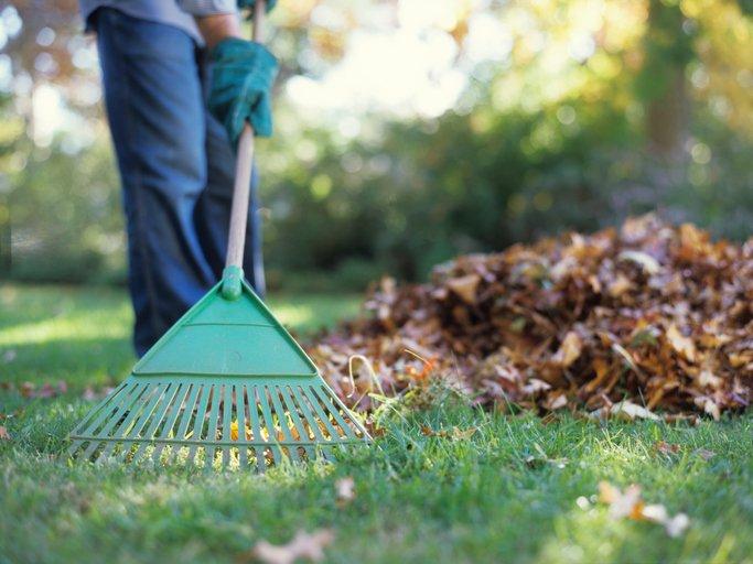 fall, lawn maintenance, seasonal lawn maintenance, fall weather, lawn care