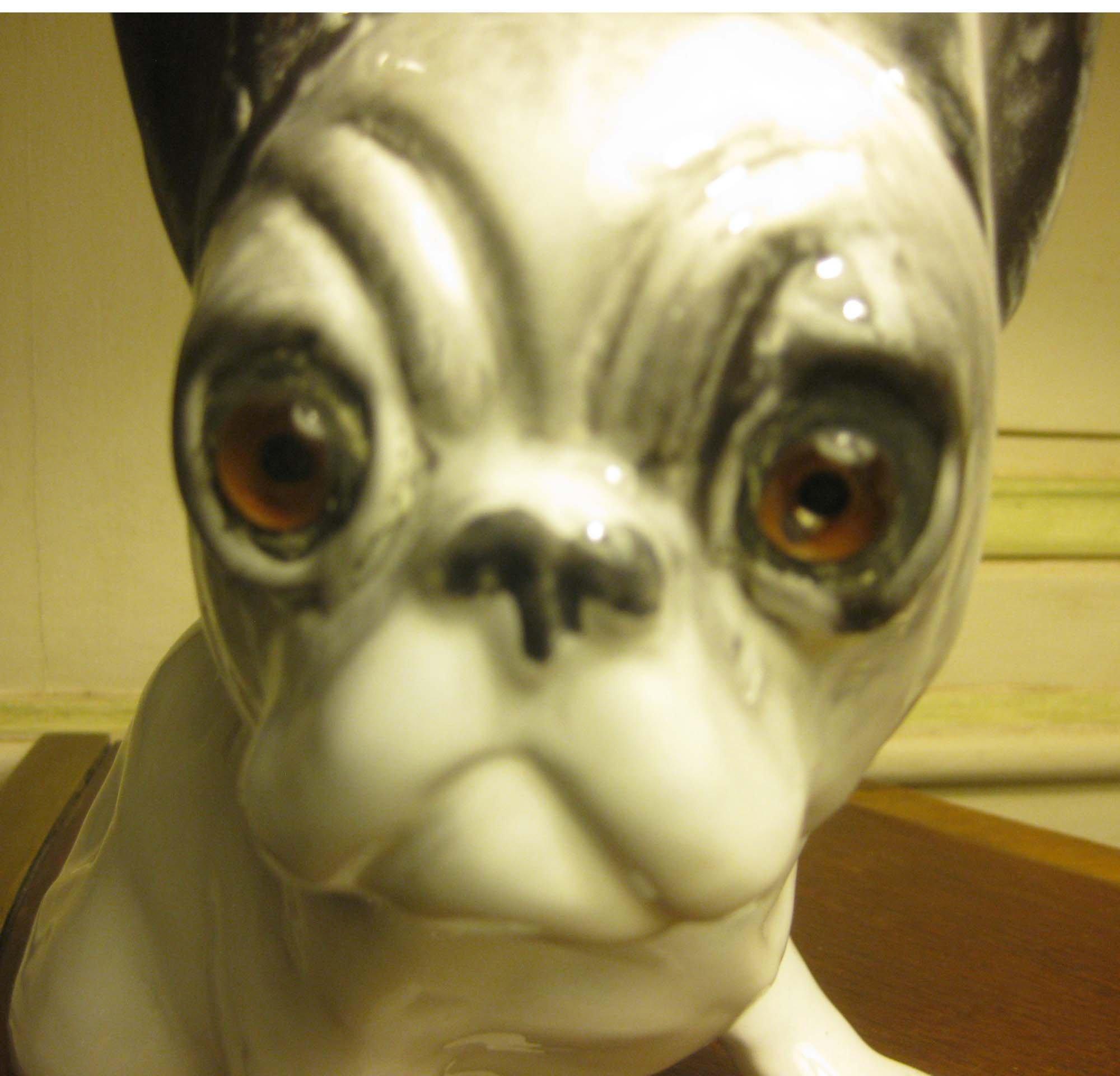 chien BAVENT,tête, galerie-bosetti-antiquites
