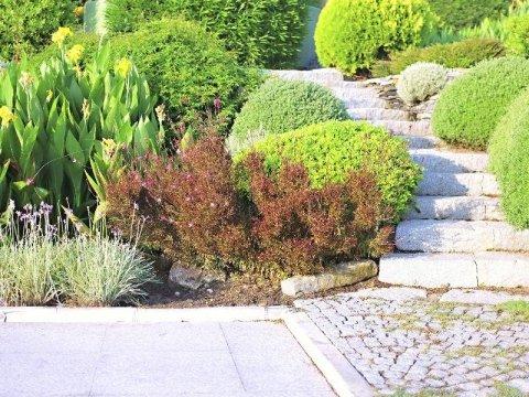 sistemazione giardini