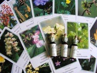 cure a base di fiori