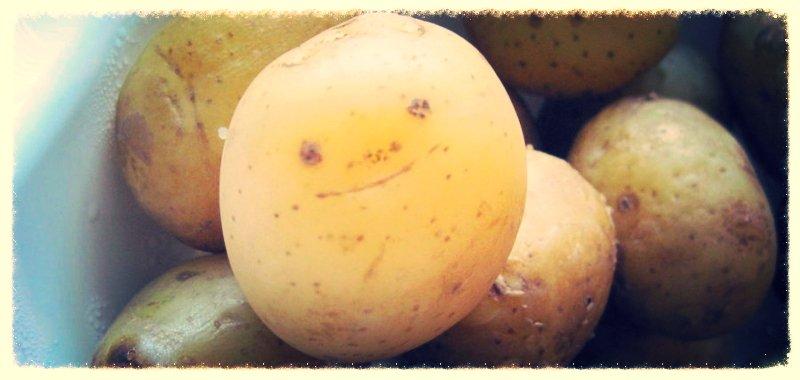 potato wholesalers