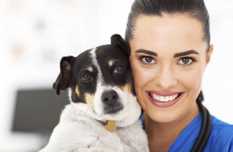 Smithfield Veterinary Services Caring Veterinarian