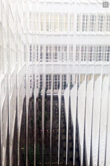 Pilkington Texture Glass Reeded™