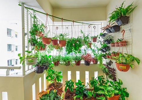 un balcone con delle piante e dei vasi appesi