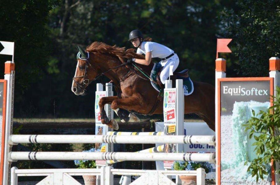 una donna salta un ostacolo a cavallo