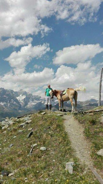un cavallo sulla cima di una montagna