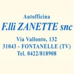 F.LLI ZANETTE SNC, FONTANELLE