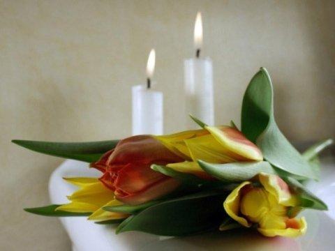 Servizi di cremazioni