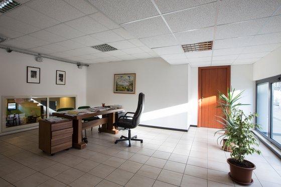 ufficio con scrivania in legno, sedia in pelle nera, tre quadri appesi al muro e due vasi con delle piante