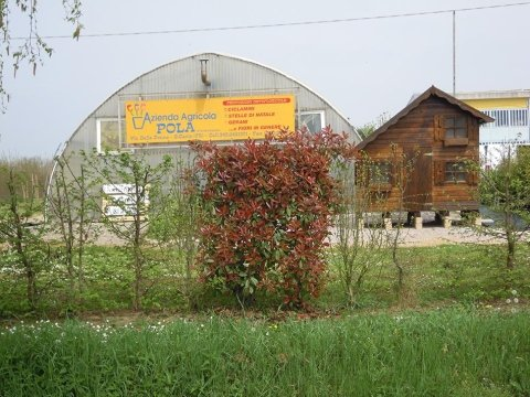 azienda agricola pola