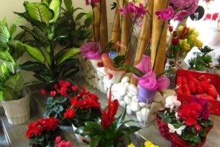 vendita composizioni di fiori