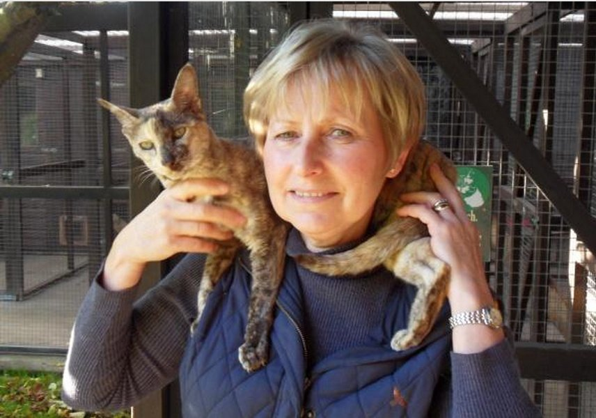 a lady holding a cat