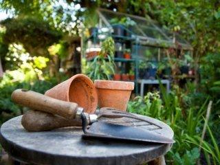 sopralluogo giardino
